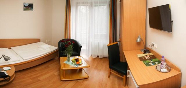 Standard Single Room Morava